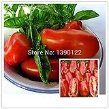 200 / bolso grande de semillas de tomate rojo de San Marzano Frutas envían 50 raros brotes de col de Bruselas para el regalo resistente a las enfermedades