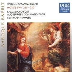 Lobet den Herrn, alle Heiden, BWV 230: Hallelujah