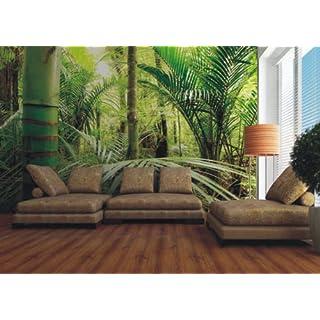 AG Design FTxxl 0134  Dschungel, Papier Fototapete - 360x255 cm - 4 teile, Papier, multicolor, 0,1 x 360 x 255 cm