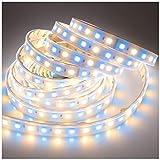 LTRGBW DC 24V 360LEDs / Spule 5M RGB + Warmweiß (2800K-3000K) 5050 SMD Wasserdichte RGBWW LED-Streifen in Silikonschlauch IP67 für Hochzeitsfest -Urlaub im Freien LED-Beleuchtung (RGBWW LED-Leiste)