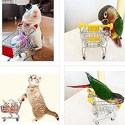 Leayao divertido juguete para loro, pájaro, gato, mini supermercado, carrito de la compra, caja de crecimiento para niños