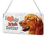 Beenanas - Placa metálica con Texto en inglés Irish Setter Dog I Love My Pet