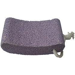 Vega Pumice Stone, Purple