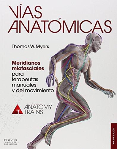 vias-anatomicas-meridianos-miofasciales-para-terapeutas-manuales-y-del-movimiento-3-edicion