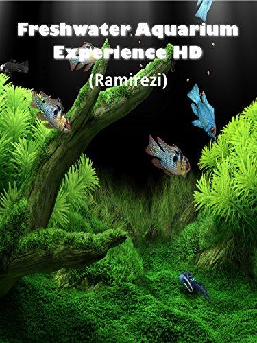 Hd Aquarium (Freshwater Aquarium Experience HD (Ramirezi) [OV])