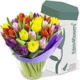 Eden4flowers MDY-20TUL Bright Brilliant Mum Bouquet of Fresh Tulips - Multi-Colour
