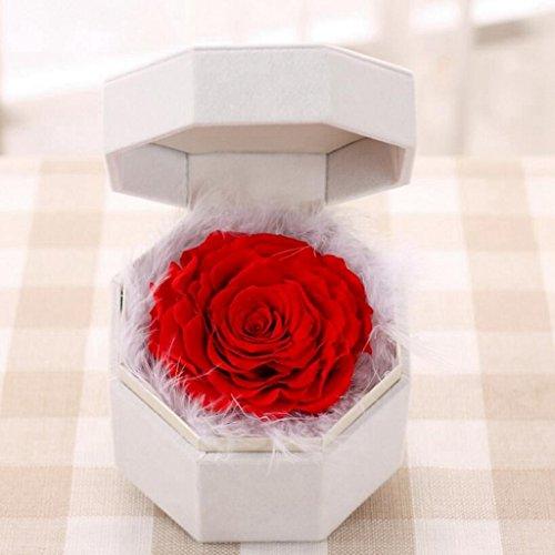 Aoligei Rose Eternity Valentinstag Geschenk nie mit kreativen romantischen 14*11cm