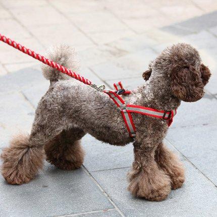 eqlef-guinzaglio-con-pettorina-s-rosso-grigio-resistente-per-cani