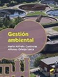 Gestión ambiental (Seguridad y medio ambiente)