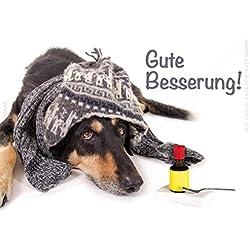 """3 Stück Doppelkarte, Karte mit Kuvert kranker Hund mit Mütze, Schal und Medizin """"Gute Besserung!"""""""