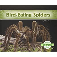 Bird-Eating Spiders (Abdo Kids: Spiders)