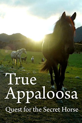 True Appaloosa Cover