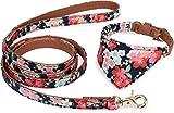 Puccybell Blumen Hundehalsband mit Tuch und Hundeleine (1,2m) im Set, Bandana Halsband und Leine für kleine und mittlere Hunde HLS004 (S, Blau)