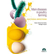 Main diseases in poultry farming. Bacterial infections