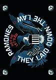 Ramones: Ramones - Eagle Flagge (Zubehör)
