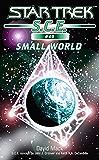 Star Trek: Small World (Star Trek: Starfleet Corps of Engineers)