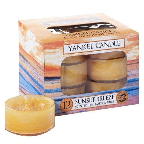 Yankee Candle Sunset Breeze Duftteelicht, 12er, Plastik, orange, 8.4 x 6.1 x 6.1 cm, 12-Einheiten