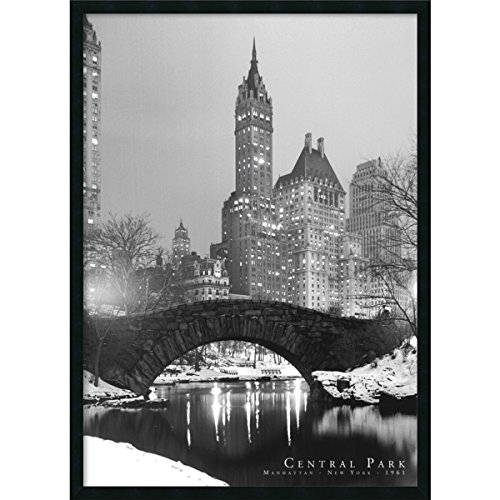 Central Park gerahmt - Central Park-brücke