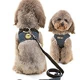Galaxer Hundegeschirr, Verstellbarer Frontgurt Hundegeschirr mit Leinenmode und Stilvolle Hundekleidung StrapazierfäHiges Langlebiges Jeansmaterial Für Laufjogging und Training