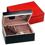 Egoist JK00185 Humidificador Humidor con hygrómetro para puros, habanos o tabacos - 40 cigarros, color rojo