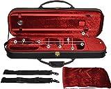 Steinbach 4/4 étui violon modèle rectangulaire vin rouge avec sac ? dos