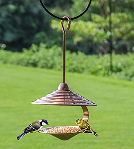 WandLee Unique Hanging Humming Pigeon Canary Parrot Wild Bird Feeder