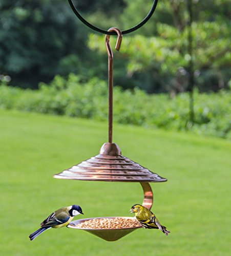 wandlee Einzigartige Aufhängen Humming Taube Kanarischen Parrot Wild Bird Feeder-Metall shell-shape Lockstoff Bird Feeder - -