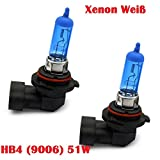 Halogen Scheinwerferlampe - XENON WEISS - Nebellampe Glühlampen für Nebelscheinwerfer 12Volt Zugelassen im Bereich der STVZO INION® (2x HB4 (9006) 51W)