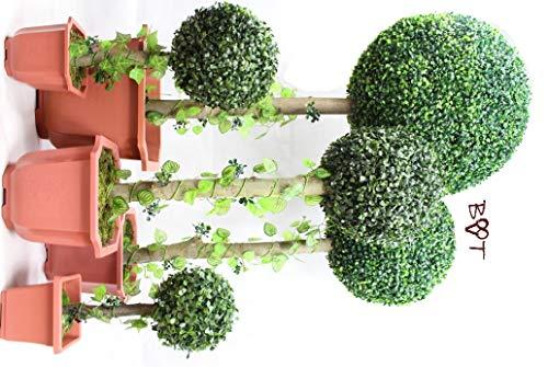 BTV Batovi 5 x Buchsbäume (5 Stück) Buchsbaum Buchsbaumfamilie grün dunkelgrün KOMPLETT mit Echtholzstamm Holz und Deko Efeuranke +
