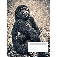 Help!: Gorilla - Climate Crisis