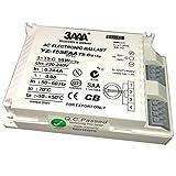 3AAA Ballast électronique T5Hyq 1x 60W/220-240pour T5-c-60W lampe fluorescente à pattes, Blanc Couleur