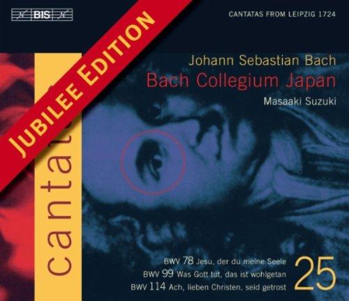 Ach, lieben Christen, seid getrost, BWV 114: Recitative: O Sunder, trage mit Geduld (Bass) (78 Tragen)