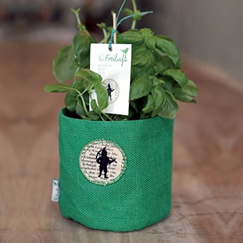 Small-Fabric-Plant-Pot-with-Gnome-Design-Light-Green