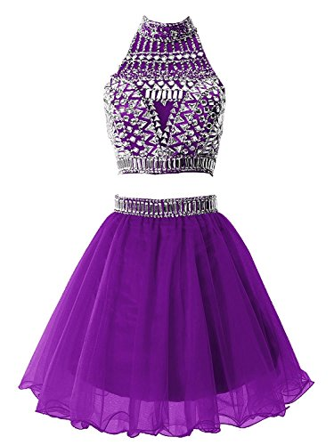 Fanciest Damen 2 Pieces Kurz Heimkehr Kleider 2016 Abendkleider Gowns Crystal Purple
