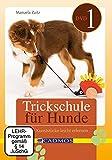 Trickschule für Hunde I [2 DVDs] [Edizione: Germania]