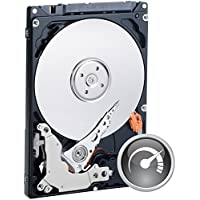 Western Digital Black - Disco duro interno de 320 GB (SATA 300)