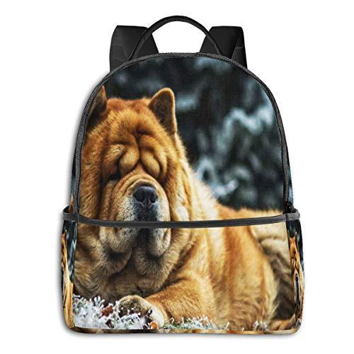 Zaino scuola casual, uomo donne rucksack zaino per borsa da viaggio per scuola ragazze ragazzo zaini scuola superiore elementare chow dog frozen