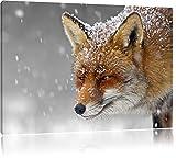 wunderschöner Fuchs im Schnee schwarz/weiß Format: 80x60 auf Leinwand, XXL riesige Bilder fertig gerahmt mit Keilrahmen, Kunstdruck auf Wandbild mit Rahmen, günstiger als Gemälde oder Ölbild, kein Poster oder Plakat