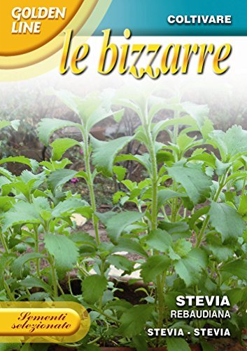 franchi-seeds-of-italy-stevia-seeds