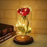 MarCooLTrip MZ Eternal Rose Flower Lamp en Glass Dome en Base de Madera Decoración de Boda Fiesta de Aniversario Decoración del hogar