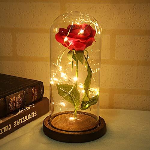 Rosen Lampe (MarCooITrip MZ Rose Blume Lampe ewige Blumen LED Nachtlicht Hochzeit rote Seidenblumen in Glaskuppel auf Holzsockel Dekoration Jubiläum Party Dekor)