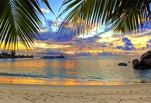 YongFoto 1,5x1m Vinyl Foto Hintergrund Strand Sand Strand Kokosnuss Palmen Felsen stones Sonnenuntergang Blauer Himmel Romantische Natur Sommer Fotografie Hintergrund für Fotoshooting Portraitfotos Party...