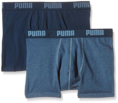 Puma Herren Basic 2p Boxershort Blue Heaven