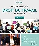 Le grand livre du droit du travail en pratique - A jour : des six ordonnances Macron, des décrets, de la loi de ratification