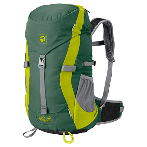 Jack Wolfskin Kinder Rucksack Kids Alpine Trail, unisex, Palm Green
