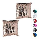 Relaxdays 2 x Pailletten Kissenbezug, Glitzer Kissen, zweifarbig, mit Farbwechsel, Zierkissenbezug, 40 x 40 cm, Champagner-Silber