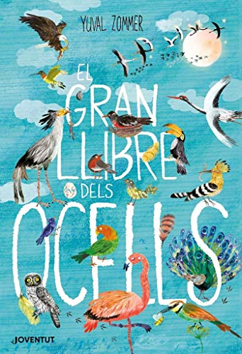 El gran llibre dels ocells Yuval Zommer Editorial: Juventut Enquadernació: tapa dura Idioma: català EAN: 9788426145840 Tots els ocells volen? Per què el flamenc és rosa? Els lloros parlen? Troba en aquest llibre les respostes a aquestes i moltes altr...