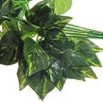 Luwu-Store Reptile Terrarium Artificial Sharp Leaves Scindapsus Aureus Chameleon Lizard Decoration Habitat Non-Toxic 10