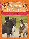 Clara et les poneys, Tome 3 : Shetland ou double poney ?