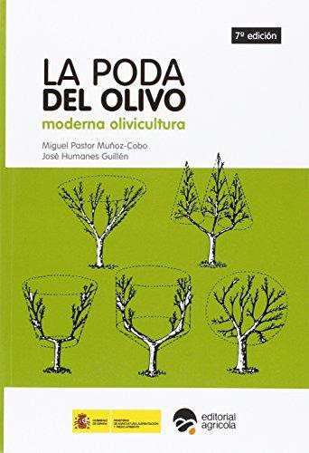 LA PODA DEL OLIVO: MODERNA OLIVICULTURA